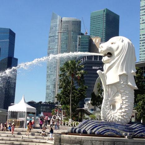 シンガポール 期待のビジネストラックの運用開始!(Covid-19対応)
